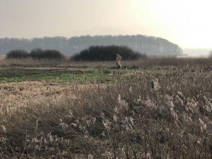 Mit der Sonne gegen den Wind: Aus der Stadt in den Naturpark